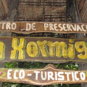 La Hormiga, el mundo verde travel