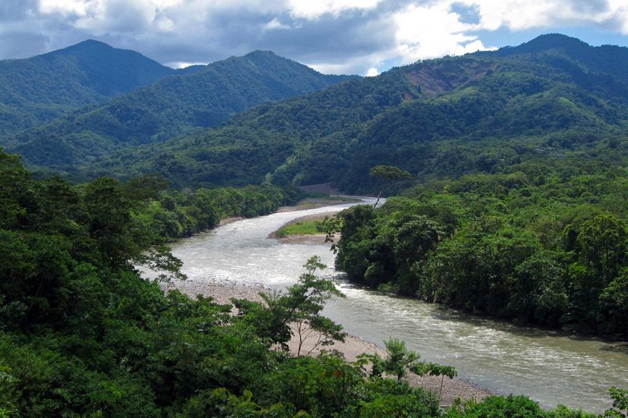 Chapare El Mundo Verde Travel